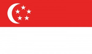singapore visa form 14a instructions